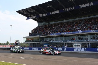 Thai promoter targeting a field of ten TCR cars